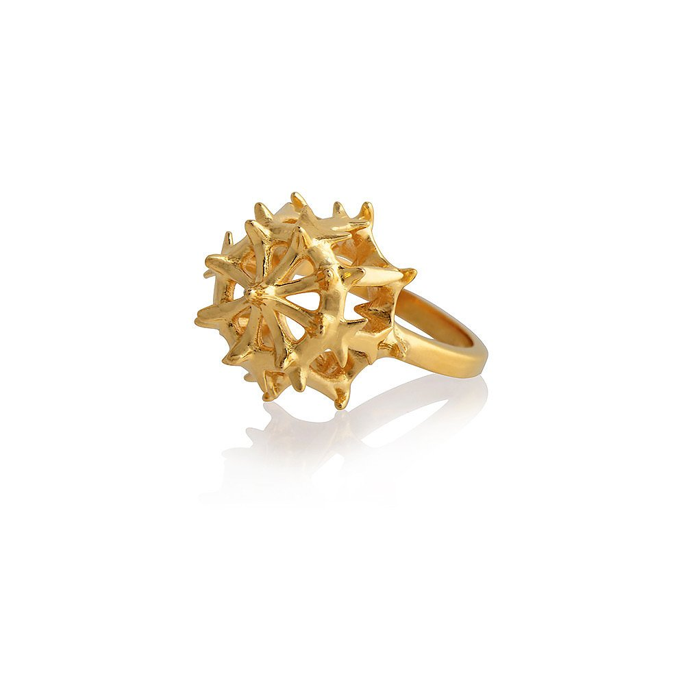 Smith/Grey Stephoidea Ring in Gold