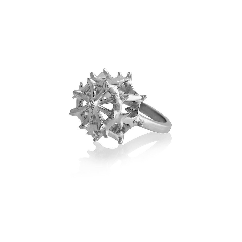 Smith/Grey Stephoidea Ring in Silver