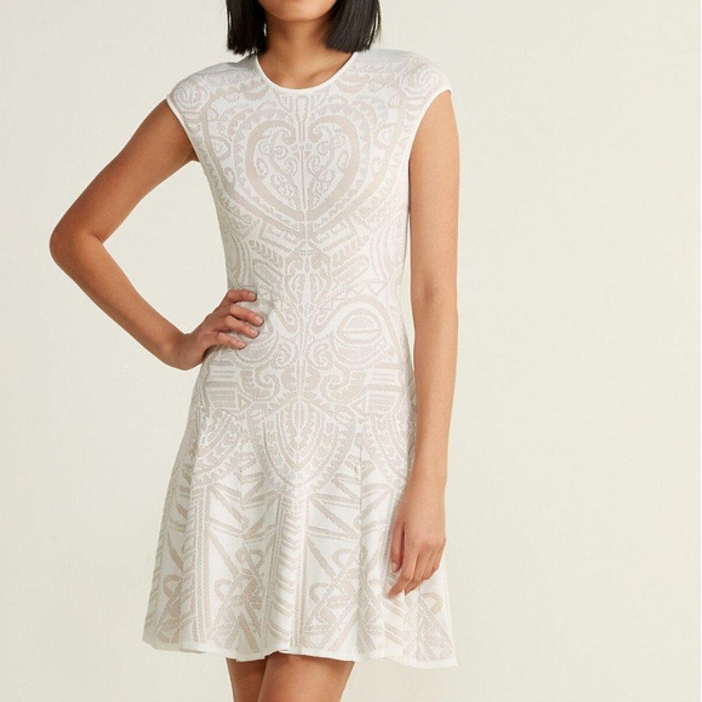 RVN Mayan Lace Jacquard Dress