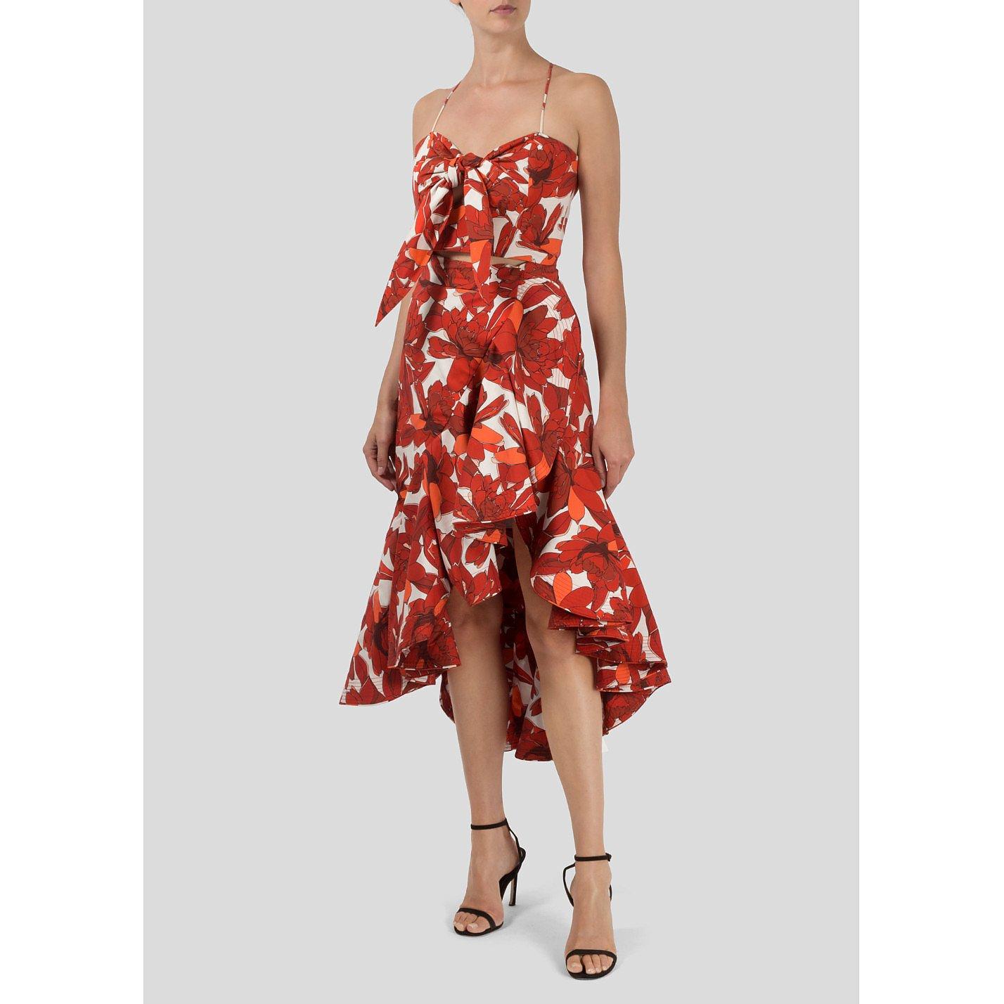 Johanna Ortiz Poppy Print Skirt and Top Set
