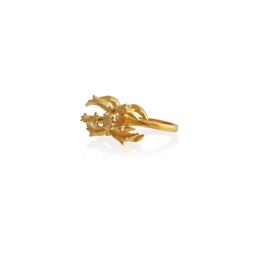 Smith/Grey Spiky Radiolaria Ring in Gold