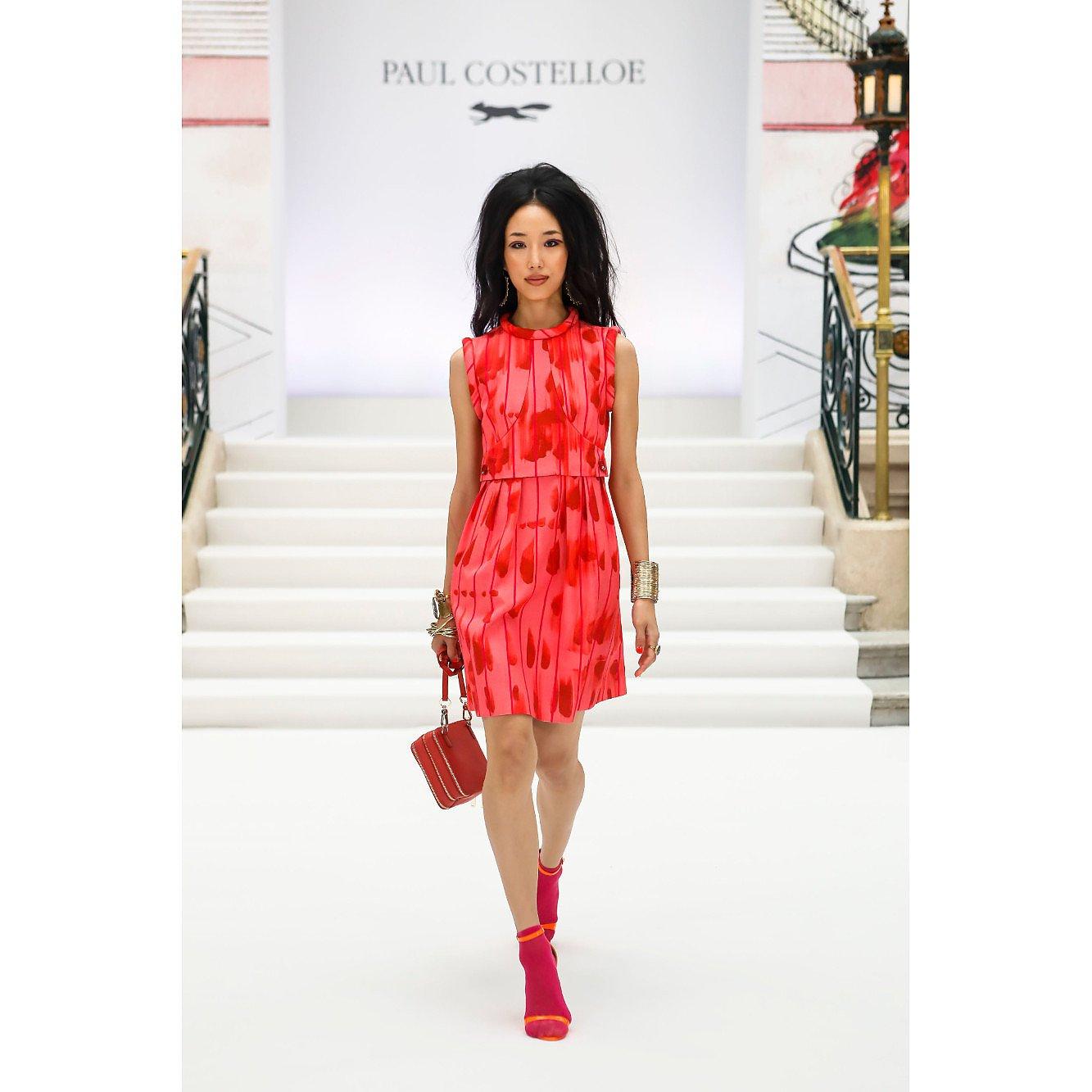 Paul Costelloe Sleeveless Printed Structured Dress